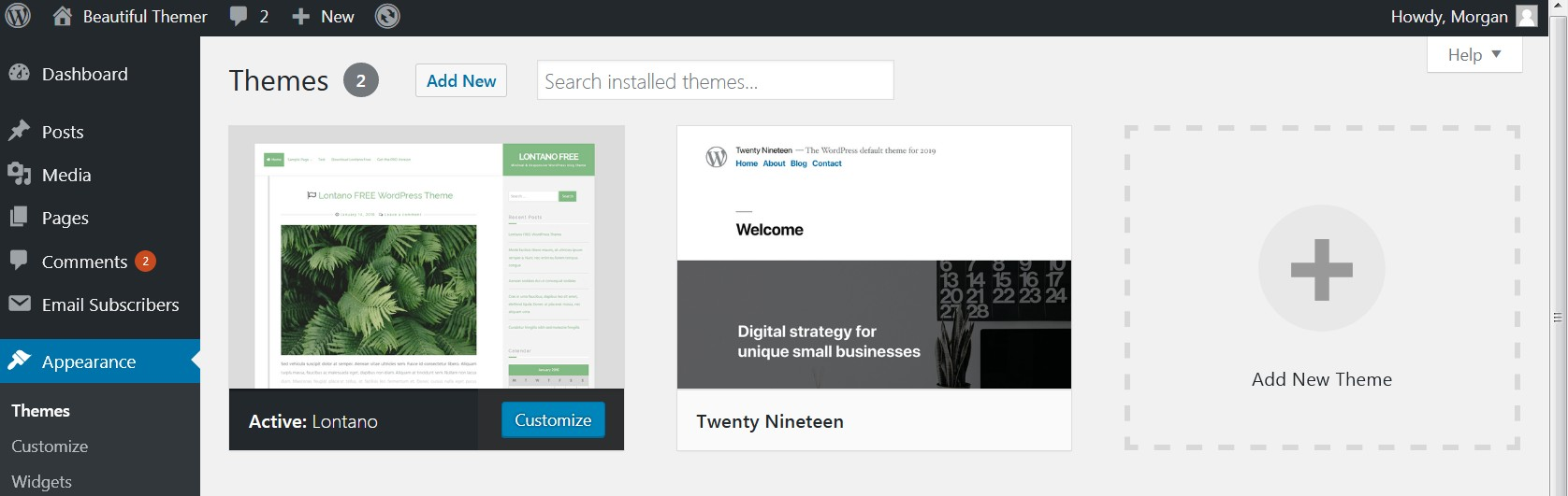 The WordPress Dashboard opemned to Appearance/Theme, showing themes already installed and the add new button and plus sign.