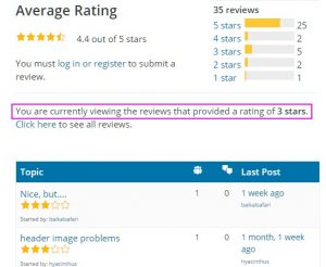 Screenshot of theme reviews filtered by 3-star rating